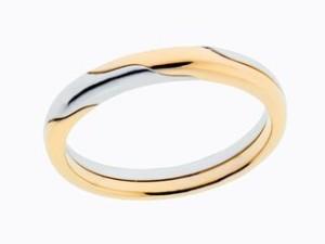ring13HP